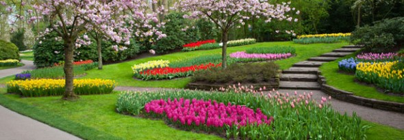 Parque Keukenhof holanda tulipanes 8