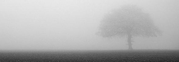por que se produce la niebla