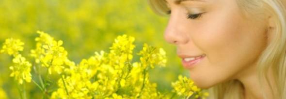 por que huelen las flores