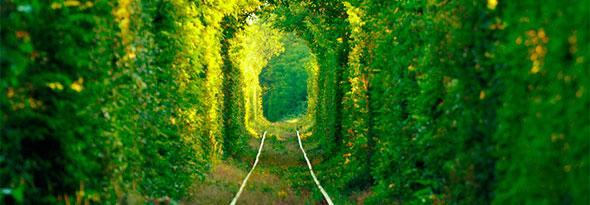 El túnel del amor existe