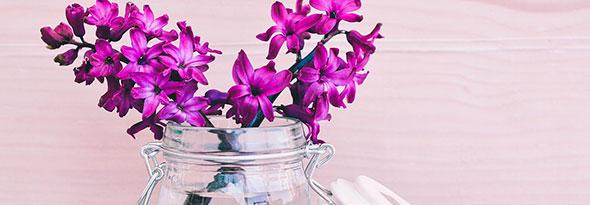 En China no se regala flores