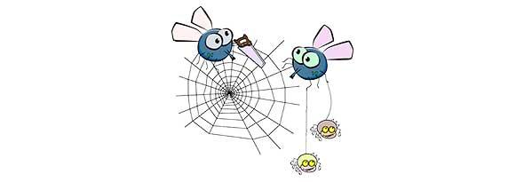 ¿Por qué hay moscas en verano?