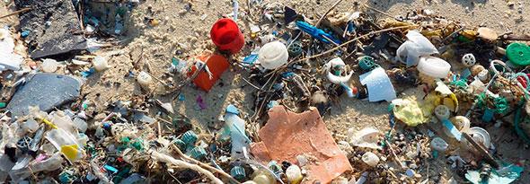 Plástico en el organismo